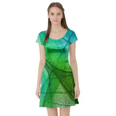 Sunlight Filtering Through Transparent Leaves Green Blue Short Sleeve Skater Dress