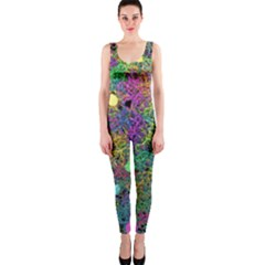 Starbursts Biploar Spring Colors Nature Onepiece Catsuit