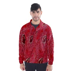 Red Peacock Floral Embroidered Long Qipao Traditional Chinese Cheongsam Mandarin Wind Breaker (men)