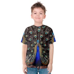 Peacock Kids  Cotton Tee