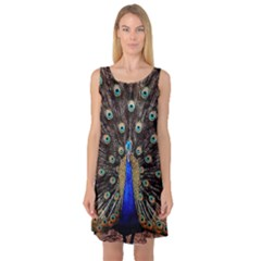 Peacock Sleeveless Satin Nightdress