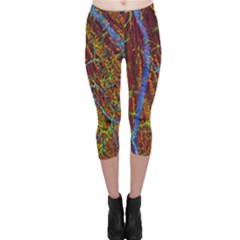 Neurobiology Capri Leggings