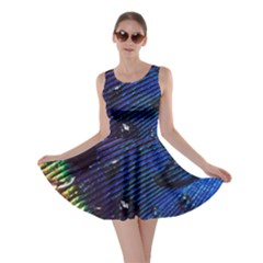 Peacock Feather Retina Mac Skater Dress