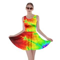 Misc Fractals Skater Dress