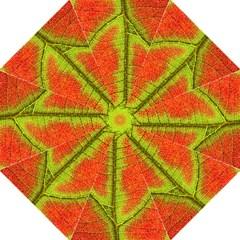 Nature Leaves Hook Handle Umbrellas (medium)
