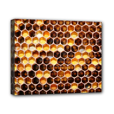 Honey Honeycomb Pattern Canvas 10  X 8