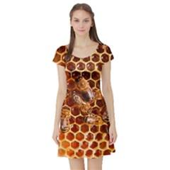 Honey Bees Short Sleeve Skater Dress