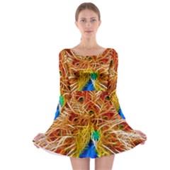 Fractal Peacock Art Long Sleeve Skater Dress