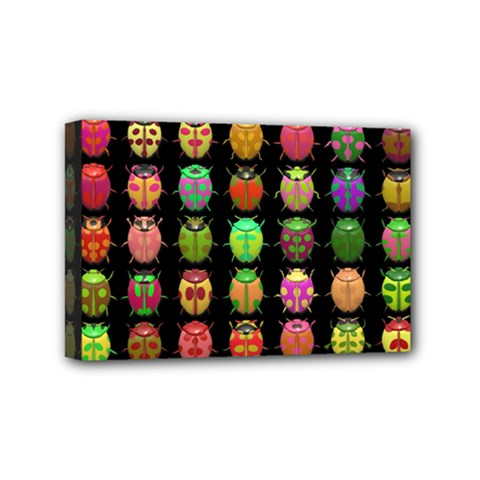 Beetles Insects Bugs Mini Canvas 6  X 4