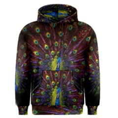Beautiful Peacock Feather Men s Pullover Hoodie