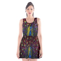 Beautiful Peacock Feather Scoop Neck Skater Dress