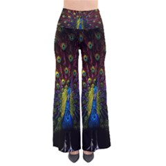 Beautiful Peacock Feather Pants