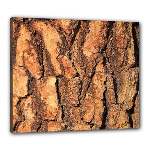 Bark Texture Wood Large Rough Red Wood Outside California Canvas 24  X 20