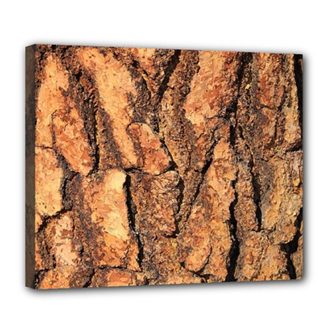 Bark Texture Wood Large Rough Red Wood Outside California Deluxe Canvas 24  X 20
