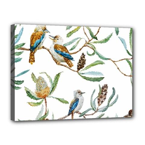 Australian Kookaburra Bird Pattern Canvas 16  X 12