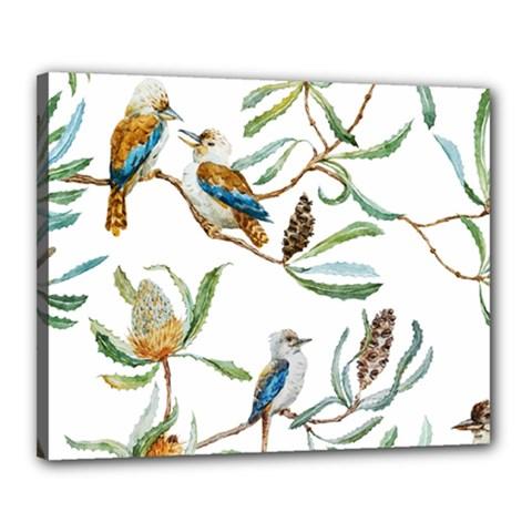 Australian Kookaburra Bird Pattern Canvas 20  X 16
