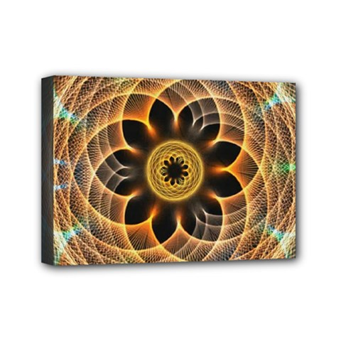 Mixed Chaos Flower Colorful Fractal Mini Canvas 7  X 5