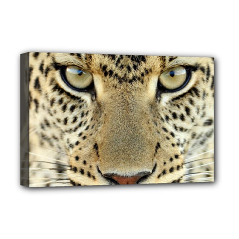 Leopard Face Deluxe Canvas 18  X 12