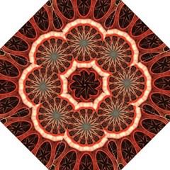 Circle Pattern Hook Handle Umbrellas (large)