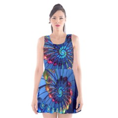Top Peacock Feathers Scoop Neck Skater Dress