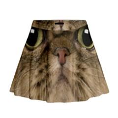 Cute Persian Catface In Closeup Mini Flare Skirt