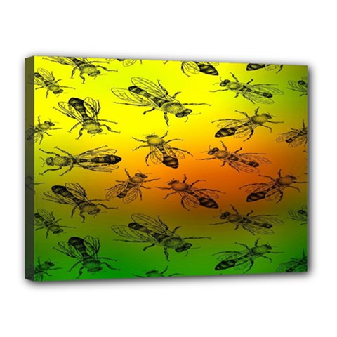Insect Pattern Canvas 16  X 12