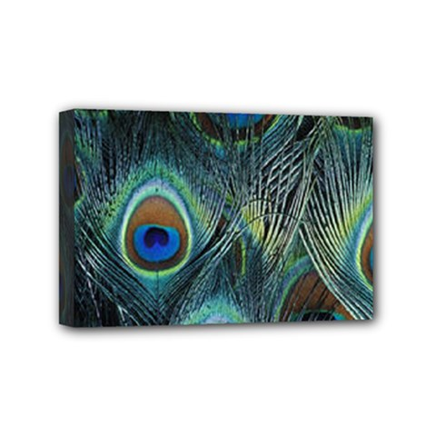 Feathers Art Peacock Sheets Patterns Mini Canvas 6  X 4