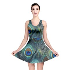 Feathers Art Peacock Sheets Patterns Reversible Skater Dress