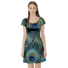 Feathers Art Peacock Sheets Patterns Short Sleeve Skater Dress