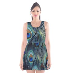 Feathers Art Peacock Sheets Patterns Scoop Neck Skater Dress