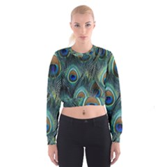 Feathers Art Peacock Sheets Patterns Cropped Sweatshirt