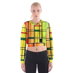 Line Rainbow Grid Abstract Cropped Sweatshirt