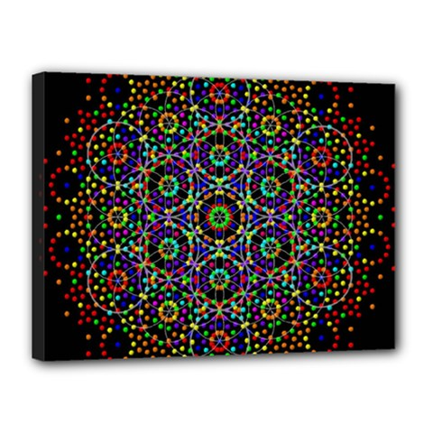 The Flower Of Life Canvas 16  X 12
