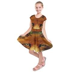 Fox Kids  Short Sleeve Dress