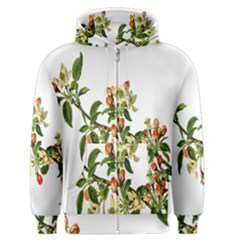 Apple Branch Deciduous Fruit Men s Zipper Hoodie