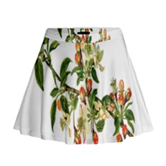 Apple Branch Deciduous Fruit Mini Flare Skirt
