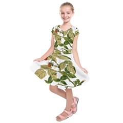 Berries Berry Food Fruit Herbal Kids  Short Sleeve Dress