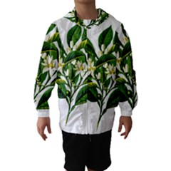 Bitter Branch Citrus Edible Floral Hooded Wind Breaker (kids)