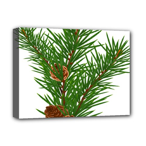Branch Floral Green Nature Pine Deluxe Canvas 16  X 12