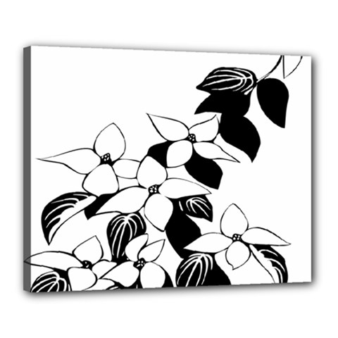 Ecological Floral Flowers Leaf Canvas 20  X 16