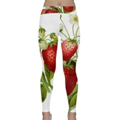 Food Fruit Leaf Leafy Leaves Classic Yoga Leggings