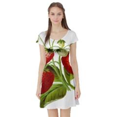 Food Fruit Leaf Leafy Leaves Short Sleeve Skater Dress