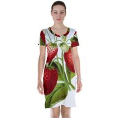 Food Fruit Leaf Leafy Leaves Short Sleeve Nightdress