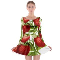 Food Fruit Leaf Leafy Leaves Long Sleeve Skater Dress