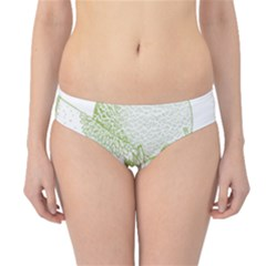 Fruits Vintage Food Healthy Retro Hipster Bikini Bottoms