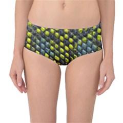 Lizard Animal Skin Mid Waist Bikini Bottoms