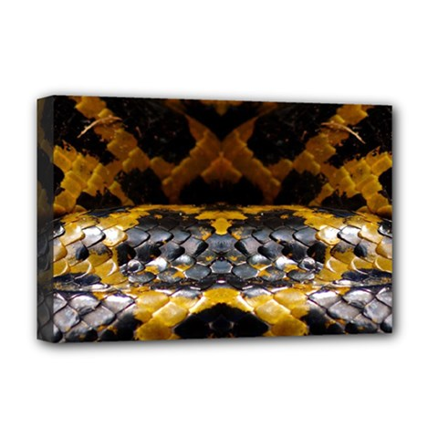 Textures Snake Skin Patterns Deluxe Canvas 18  X 12