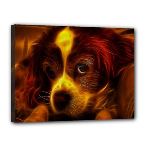 Cute 3d Dog Canvas 16  X 12