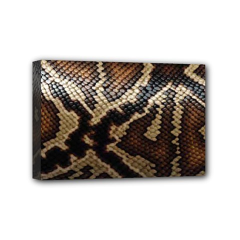 Snake Skin Olay Mini Canvas 6  X 4