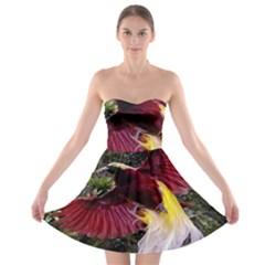 Cendrawasih Beautiful Bird Of Paradise Strapless Bra Top Dress